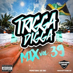 TRIGGA DIGGA MIX VOL. 39