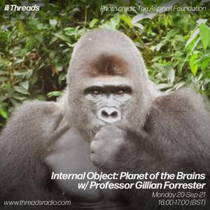 Internal Object: Planet of the Brains w/ Professor Gillian Forrester - 20-Sep-21