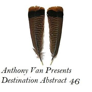Anthony Van Presents Destination Abstract 46