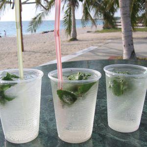 Summer Cocktail Mix