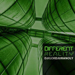 Dj Igor Djuranoly - Different Reality