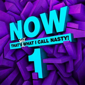Mr.Nasty - Now that's NOT what i call nasty vol.1