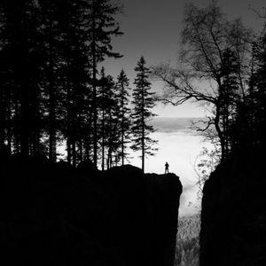 Krokskogen - Nordmarka morning dew