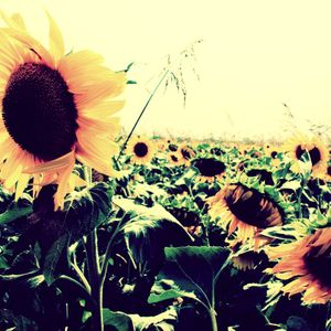 Goodbye Summer Mix 2012 (Music Dealer)