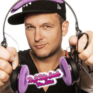 Hot 'n' New Edition 2013 - Vol.1 mixed by DJ Big Sash the Addict