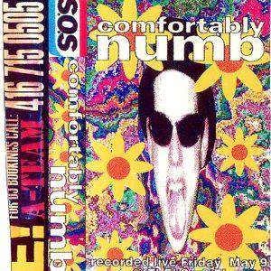 DJSoS - Comfortably Numb