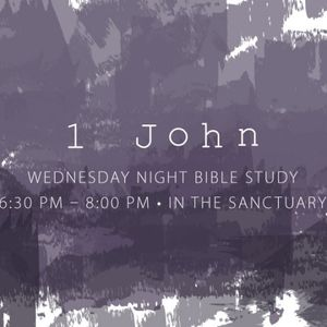 1 John Bible Study Part 2 - Audio