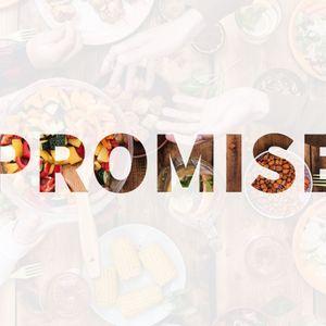 Meals With Jesus: Promise (Luke 24:13-35) - Stephen Walton