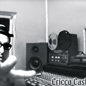 CriccoCastelli Dj set.Broadcasted on BBC Radio1 UK. 2005