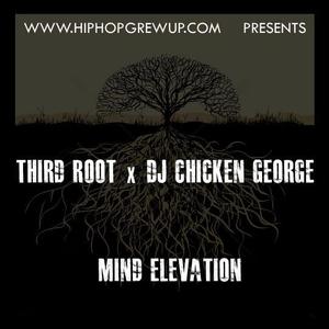 Third Root X DJ Chicken George - Mind Elevation