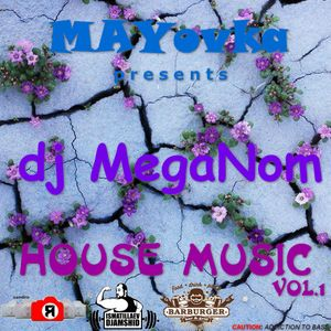 DJ Meganom - House Music Vol.1 2016