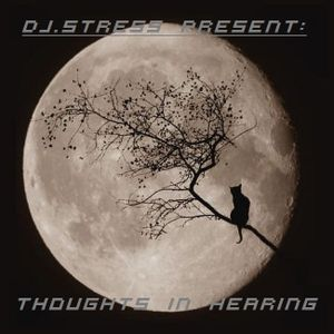 DJ.Stress - Thoughts In Hearing