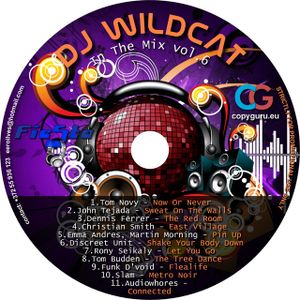 DJ Wildcat - In The Mix vol.6