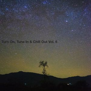 Turn On, Tune In & Chill Out Volume 6