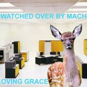 All Watched Over by Machines of Loving Grace ~ Pt.3