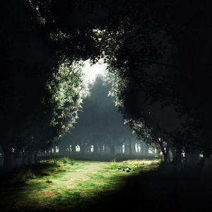 Sylenze DJ Live Set / Zauberwald meets Weird Encounters / Zenonesque - Psychedelic Techno