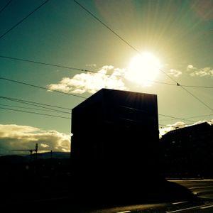 Die Sonne Und Der Iltis