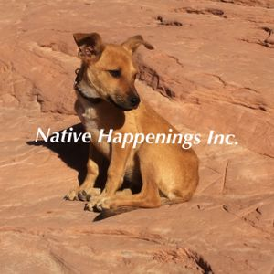 Native Happs: Who let the Rez Dawgs Out???