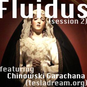 Fluidus (session 2)