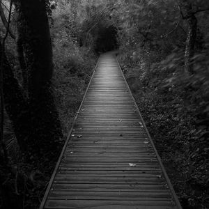 absolute darkness - path I