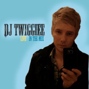 On The Fly - DJ Twiggiee