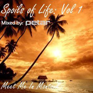 Spoils of Life: Vol. 1 Meet Me in Montauk - Mixed by Petar