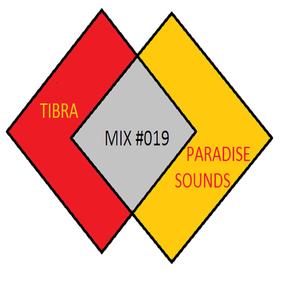 DJ Tibra - Paradise Sounds Essential Mix 019 2017-07-28 #BdayMix
