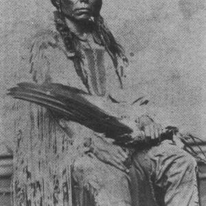 Last Dream of Crazy Horse