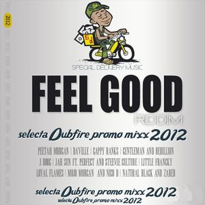 VA- Feel Good Riddim Promo mix 2012 (special Delivery) mixed by selecta Dubfire