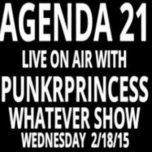 Agenda 21 CA Punk live interview with PunkrPrincess recorded 2.18.15
