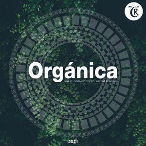 ORGANICA 2021 MIX (Compilation Beatport)