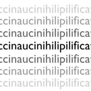 floccinaucinihilipilification