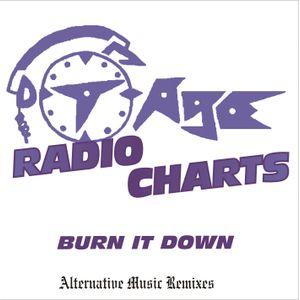 DJ T-Age's Radio Charts - Burn It Down (11/12)