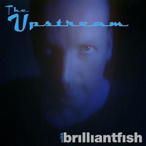 The Upstream with brilliantfish_EP#3