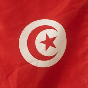 Emission Retour sur le FSM de Tunis 2 avril 2015