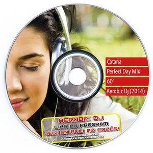 Catana - Perfect Day 2014 MiniMix (140BPM)