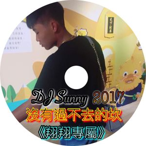 DJ Sunny - 沒有過不去的坎 2017《翔翔專屬》