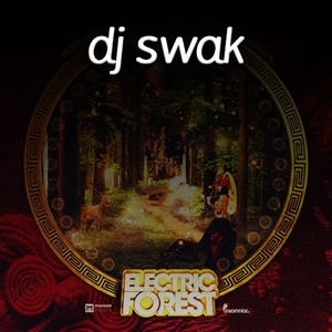 swak's Electric Forest 2015 Entry