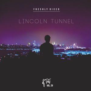 DJ TNT - Freshly Diced Vol 29 (Lincoln Tunnel)