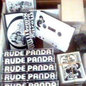 RUDE PANDA Mostly Instrumental Xciting ! MIX ! !