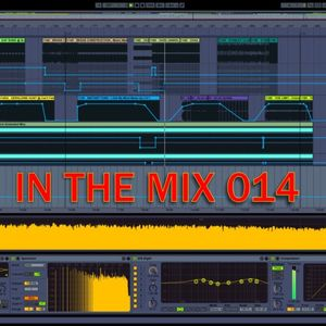 IN THE MIX 014