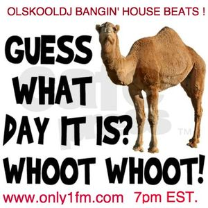 HUMP DAY BOOGIE  6/25/15