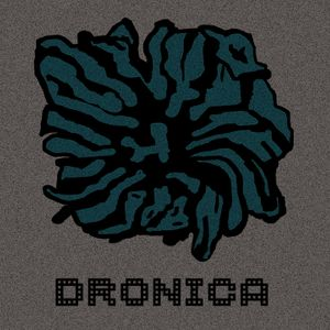 Dronica #23 - Dronica 9 (Day 2) - Monday the 18th of February 2019