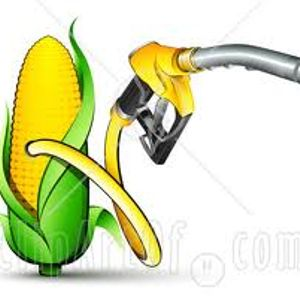 The Eco Show: Biofuels