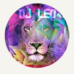 Best of 2013 - Mad Beats by DJ Leo
