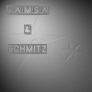 4 hand set live homerec. setting controls: s.a.m.s.a / h.r. schmitz