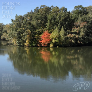 Sounds From Fall 2016