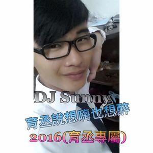 DJ Sunny - 育丞說想嗨也想醉 2016(育丞專屬)