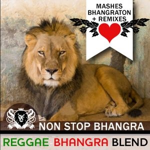 NSB - Bhangra Reggae Blend