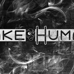 Fake Human 10 minutes DJ Set